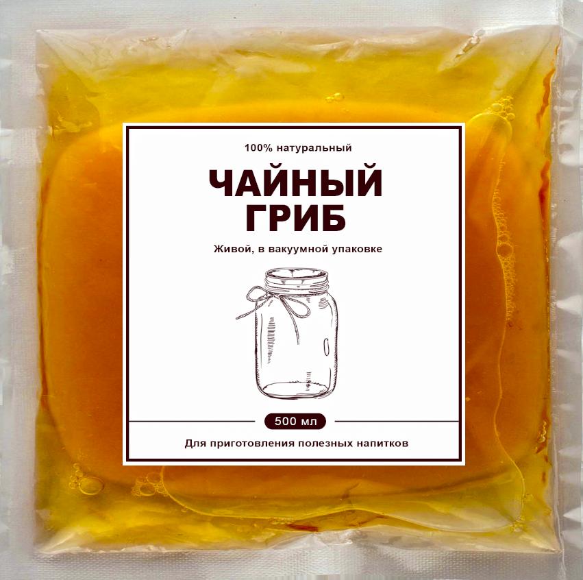 Фото чайного гриба в вакуумной упаковке