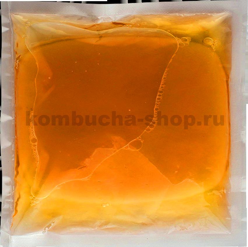 Фото чайного гриба в упаковке без этикетки
