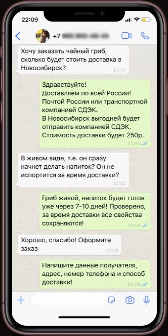 Скриншот мобильного телефона с диалогом клиента